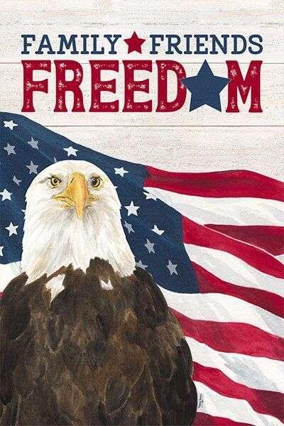 Bald Eagle and American Flag art by Tara Reed