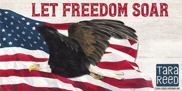Let Freedom Soar Patriotic fabric by Tara Reed for Riley Blake Designs